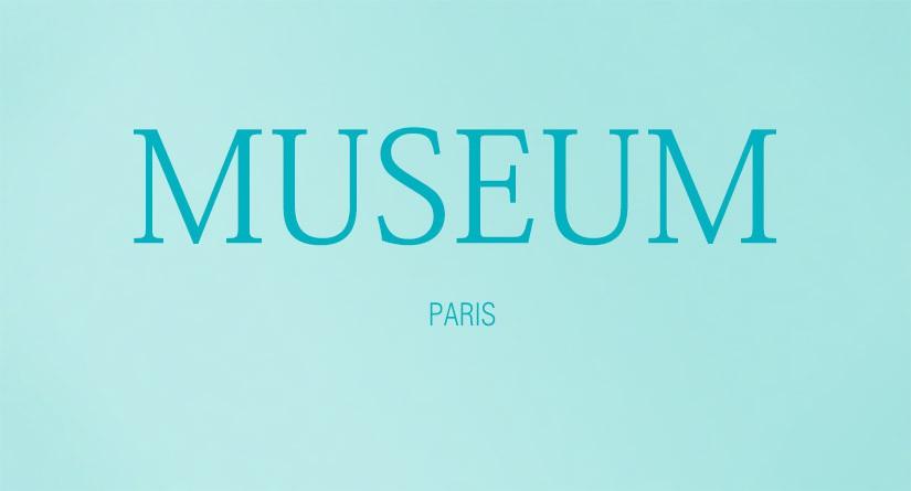 ルイ・ヴィトンの現代アート美術館がパリにオープンするそうです